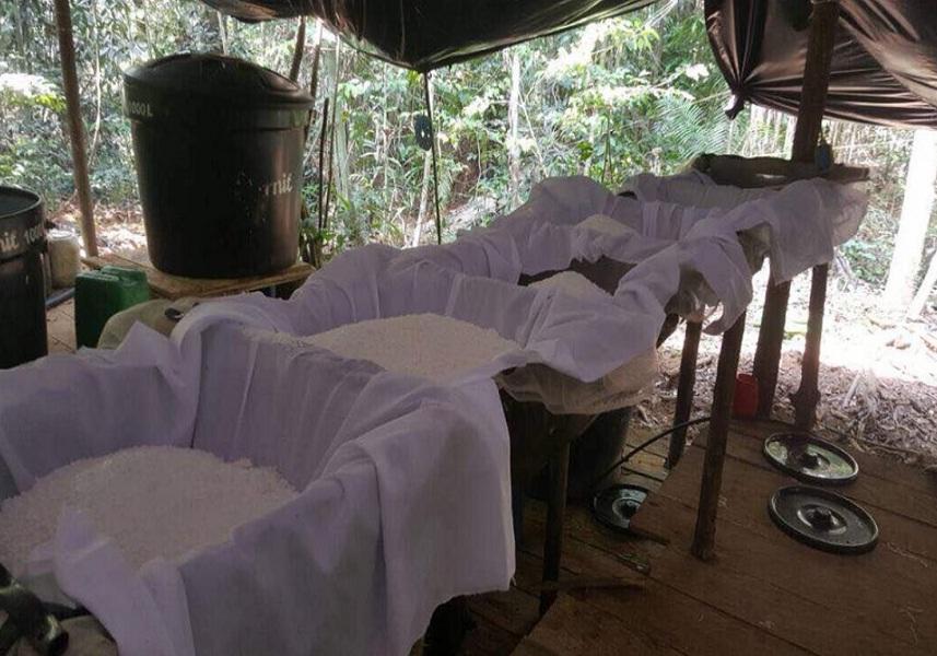Desmantelado campamento clandestino de drogas en la frontera con Colombia